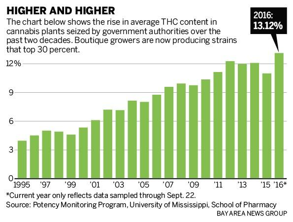 Average THC levels grow over time 40 THC 35 30 25 20 THC